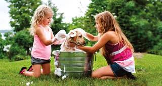 Pflegetagegeldversicherung: Kinder waschen Hund